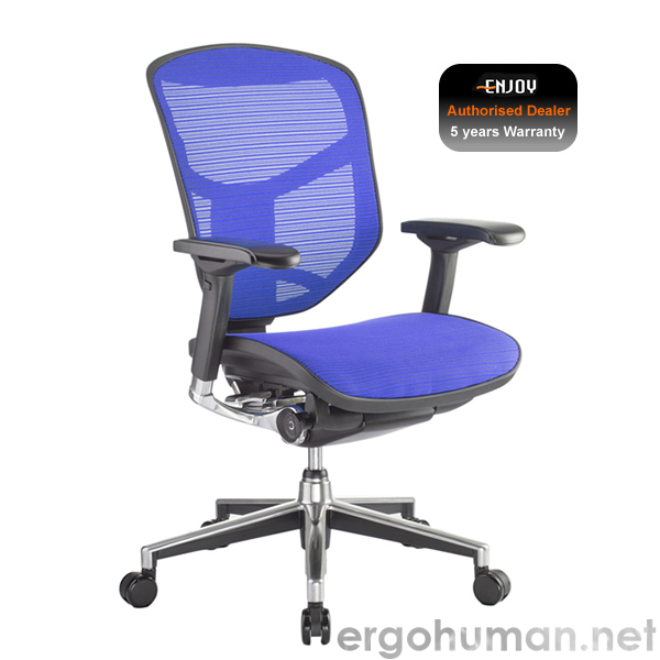 Enjoy Elite Blue Mesh Office Chair
